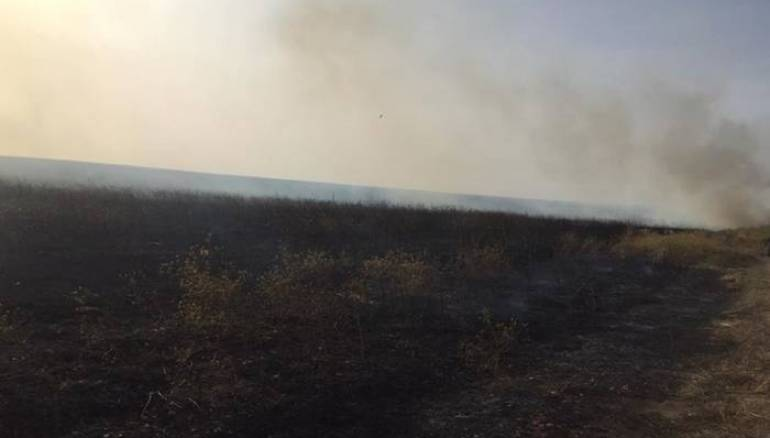 Crop Fires Destroy 1,500 Hectares in Eastern Syria