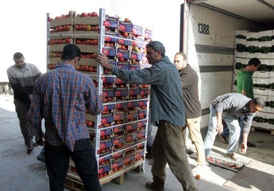 Syria Exports Hundreds of Tons of Vegetables and Fruits to Neighboring and Gulf Countries