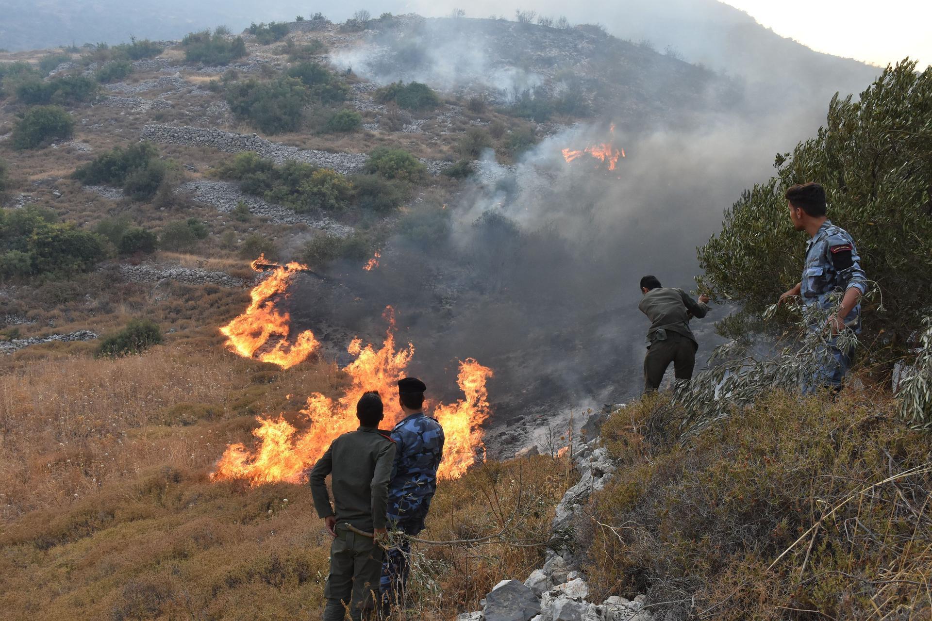 Syria: When war meets bushfires