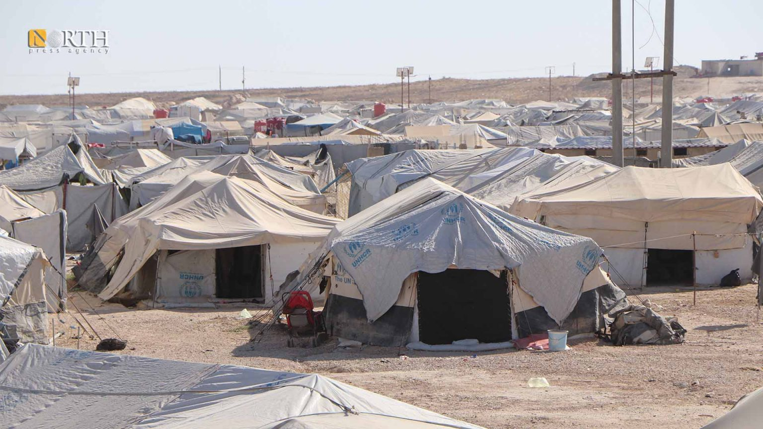 NGO Suspends Activities in al-Hol Camp After Armed Attack