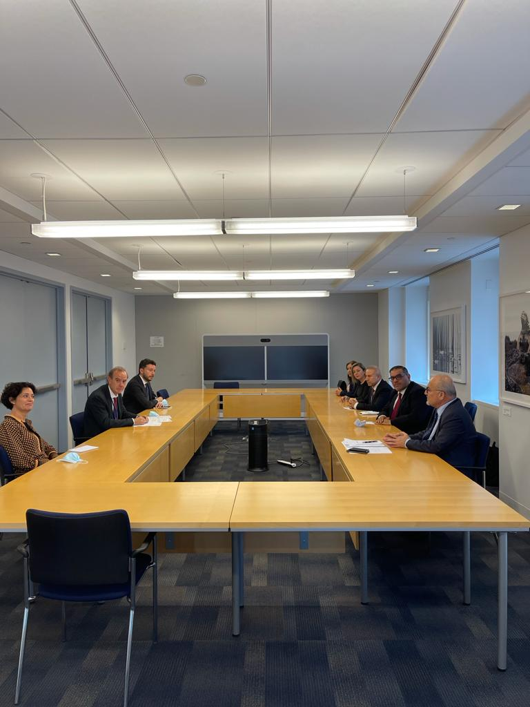 Opposition Delegation Meets EU Mission to UN, Norway, and Denmark