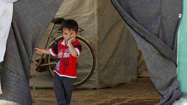 Syria Jordan Border: Refugees at Risk if Returned Under New UN Plans