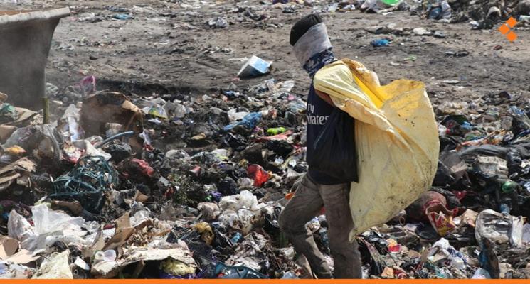 Widespread Nylon Bag Retrieval Threatens Public Health in Lattakia