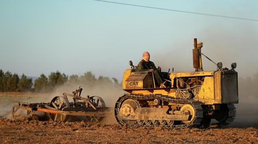 Dry Year Leaves Syria Wheat Farmers Facing Crop Failure